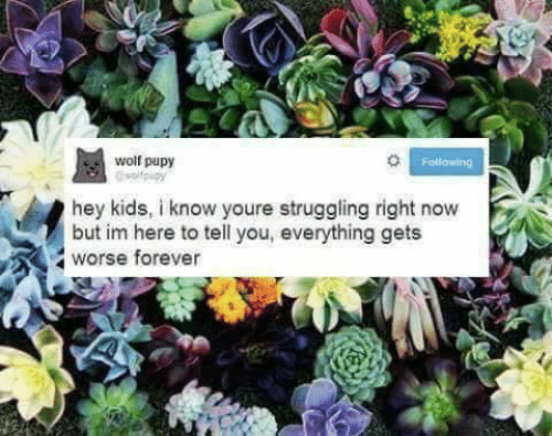 Forever, Kids, and Wolf: wolf pupy  Following  hey kids, i know youre struggling right now  but im here to tell you, everything gets  worse forever