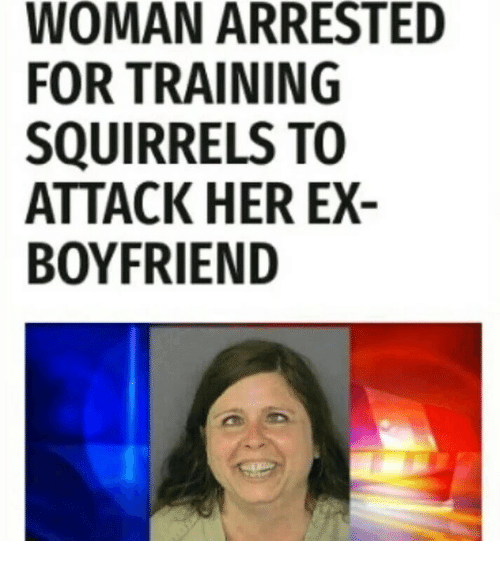 woman trains squirrels to attack ex boyfriend