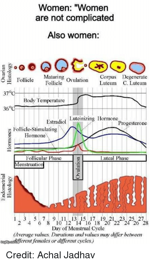"""ovulation: Women: """"Women  are not complicated  Also women:  Maturing ovulation Luteum C  Corps Degenerate  Follicle Follcle  37°  Body Temperature  Estradiol Luteinizing Hormonc  Progesterone  Follicle-Stimulating  Homone  Follicular Phasc  enstruation  Luteal Phasc  cn  1 2 3 4 5  7 8 9 1011121314151617181201222  26  Day of Mcnstrual Cycle  Average values Durations dvalues may differ behween  eent females or dfferent cycles) Credit: Achal Jadhav"""
