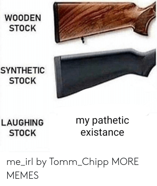 Existance: WOODEN  STOCK  SYNTHETIC  STOCK  LAUGHING  STOCK  my pathetic  existance me_irl by Tomm_Chipp MORE MEMES