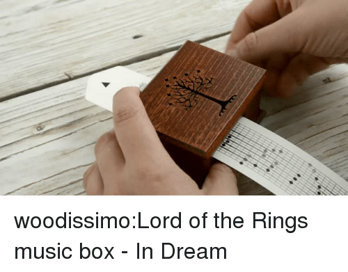 Music, Tumblr, and Blog: woodissimo:Lord of the Rings music box - In Dream