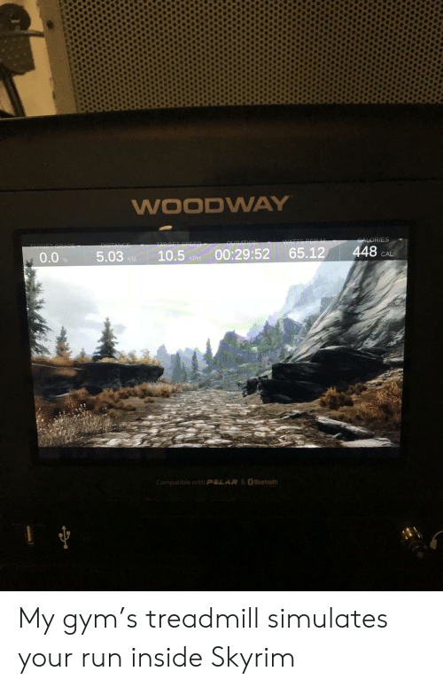 Treadmill: WOODWA  0.0 5.03 P 10. 00:29:52 65.12 448 A  KM  Compatible with Ang  &#Bluetooth My gym's treadmill simulates your run inside Skyrim
