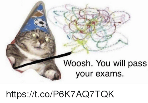 Memes, 🤖, and Will: Woosh. You will pass  our exams. https://t.co/P6K7AQ7TQK