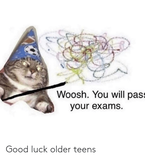 Good, Dank Memes, and Luck: Woosh. You will pass  your exams. Good luck older teens