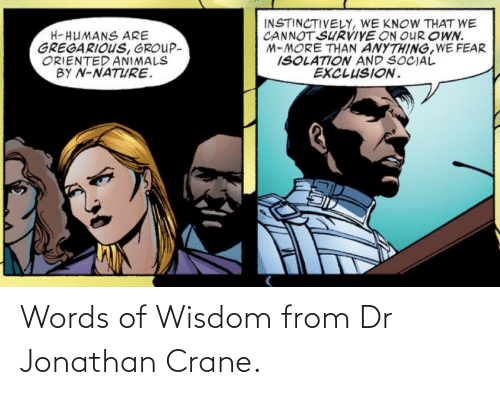 words: Words of Wisdom from Dr Jonathan Crane.