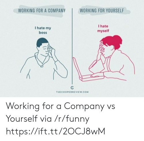 46bd351d Funny, Working, and Company: WORKING FOR A COMPANY WORKING FOR YOURSELF I  hate