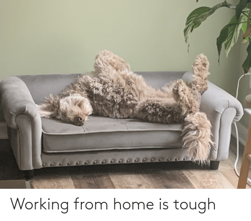 Home Is: Working from home is tough