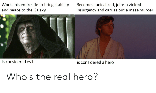 radicalized: Works his entire life to bring stability  Becomes radicalized, joins a violent  insurgency and carries out a mass-murder  and peace to the Galaxy  is considered evil  is considered a hero Who's the real hero?