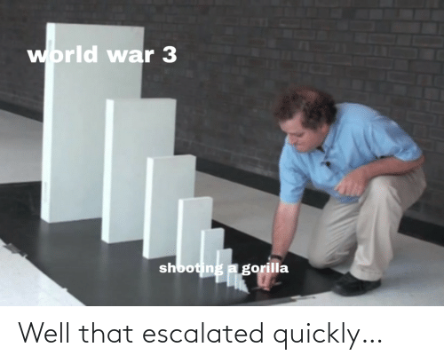 That Escalated: world war 3  shooting a gorilla Well that escalated quickly…