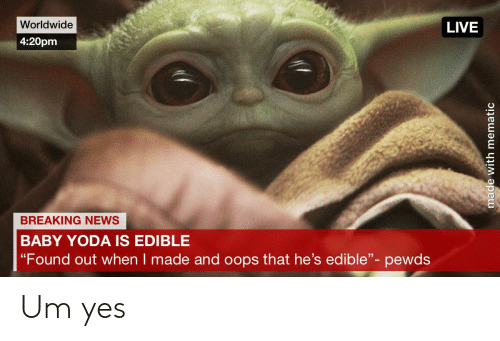 Worldwide Live 420pm Breaking News Baby Yoda Is Edible Found