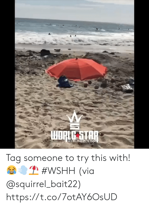 Wshh, Squirrel, and Tag Someone: WORLG STAP  HIP HOP COM Tag someone to try this with! 😂💨⛱ #WSHH (via @squirrel_bait22) https://t.co/7otAY6OsUD