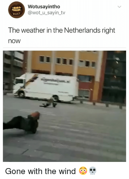 Netherlands, The Weather, and Weather: Wotusayintho  @wot_u_sayin_tv  wust  The weather in the Netherlands right  now Gone with the wind 😳💀