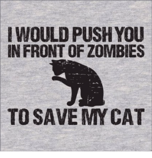 Memes, Zombies, and 🤖: WOULD PUSH YOU  IN FRONT OF ZOMBIES  TO SAVE MYCAT