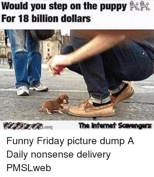 18 Billion: Would you step on the puppy  For 18 billion dollars  The htemet Scavengers <p>Funny Friday picture dump  A Daily nonsense delivery  PMSLweb </p>