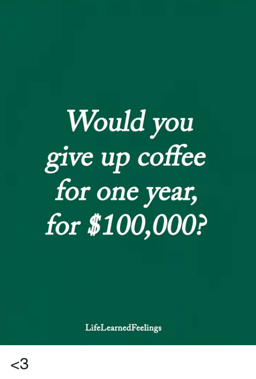 Anaconda, Memes, and Coffee: Would you  ve up coffee  g1  for one year  for $100,000?  LifeLearnedFeelings <3
