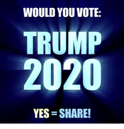 Vote Trump: WOULD YOU VOTE:  TRUMP  2020  YES SHARE!