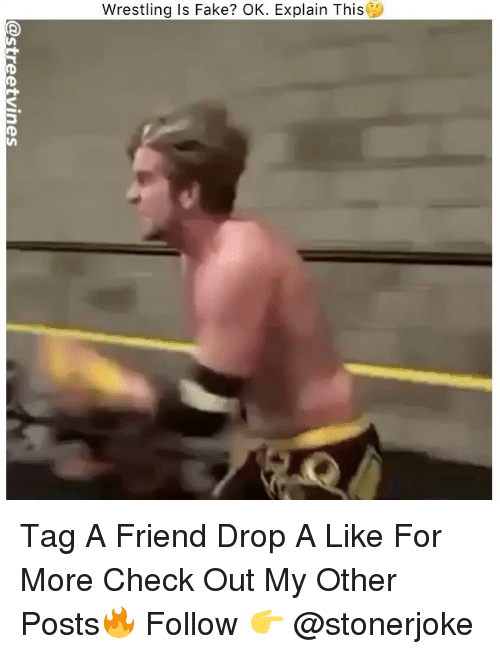 Fake, Memes, and Wrestling: Wrestling Is Fake? OK. Explain This Tag A Friend Drop A Like For More Check Out My Other Posts🔥 Follow 👉 @stonerjoke