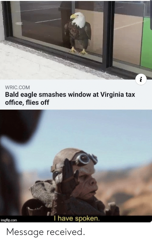 Virginia: WRIC.COM  Bald eagle smashes window at Virginia tax  office, flies off  T have spoken.  imgflip.com Message received.