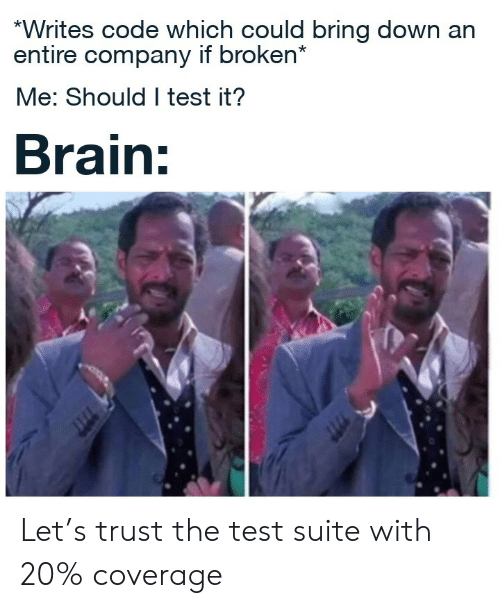 company: *Writes code which could bring down an  entire company if broken*  Me: Should I test it?  Brain: Let's trust the test suite with 20% coverage