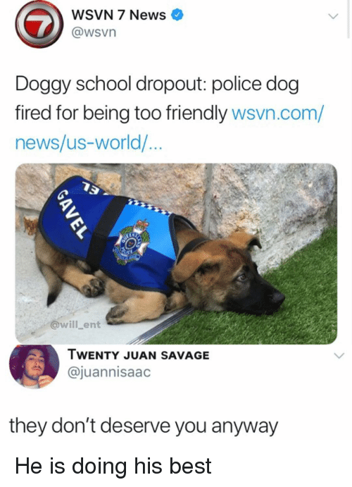 Memes, News, and Police: WSVN 7 News  @wsvn  Doggy school dropout: police dog  fired for being too friendly wsvn.com/  news/us-world/...  @will ent  TWENTY JUAN SAVAGE  @juannisaac  they don't deserve you anyway He is doing his best