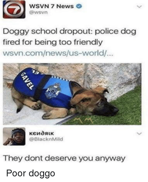 police dog: WSVN 7 News  @wsvn  Doggy school dropout: police dog  fired for being too friendly  wsvn.com/news/us-world/.  @BlacknMild  They dont deserve you anyway Poor doggo
