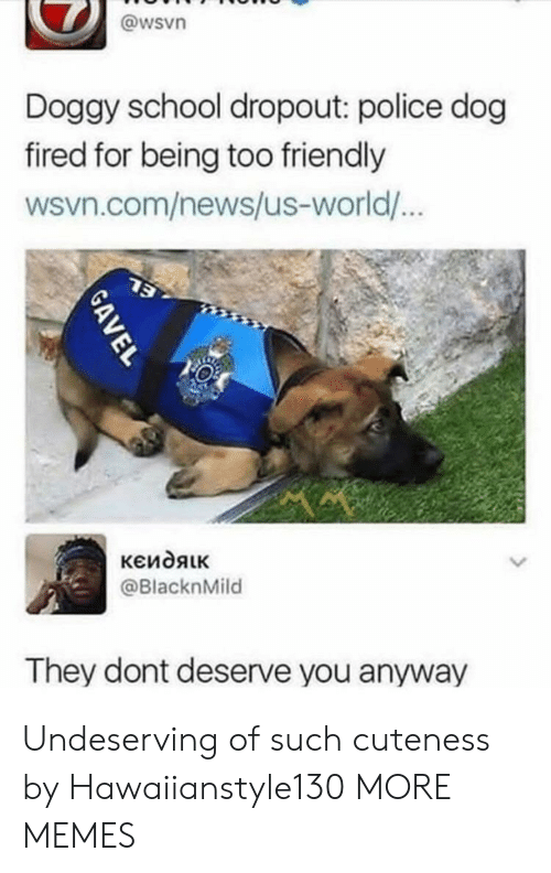 police dog: @wsvn  Doggy school dropout: police dog  fired for being too friendly  wsvn.com/news/us-world/  @BlacknMild  They dont deserve you anyway Undeserving of such cuteness by Hawaiianstyle130 MORE MEMES