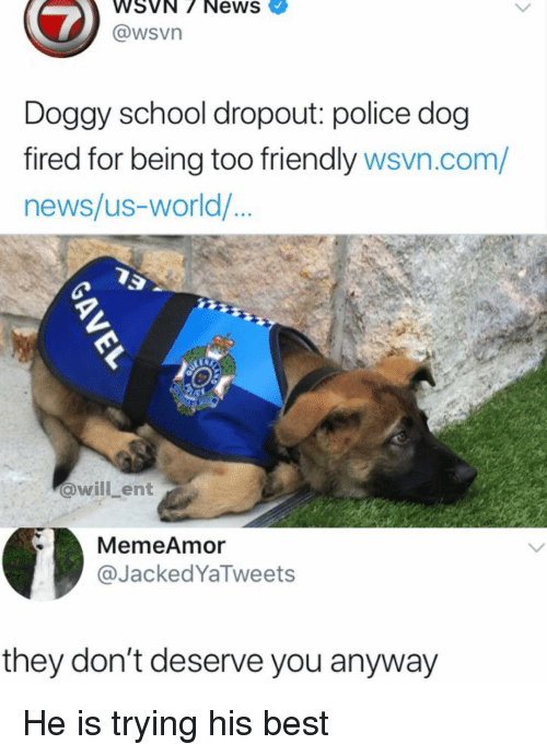 police dog: WSVN/ NewS  @wsVn  Doggy school dropout: police dog  fired for being too friendly wsvn.com/  news/us-world/  @willLent  MemeAmor  @JackedYaTweets  they don't deserve you anyway He is trying his best