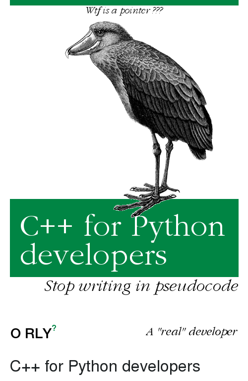 """Python, For, and Pseudocode: Wtfis a pointer ???  C++ for Python  developerS  Stop wting in pseudocode  O RLY  A """"real""""developer C++ for Python developers"""