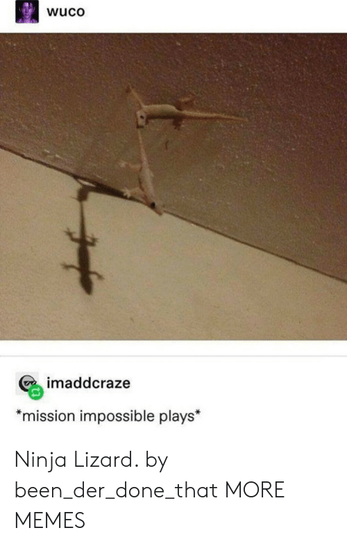 "Der: wuco  imaddcraze  *mission impossible plays"" Ninja Lizard. by been_der_done_that MORE MEMES"