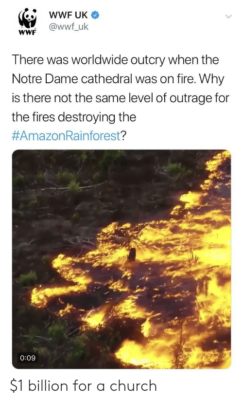 Church, Fire, and Notre Dame: wWF UK  @wwf_uk  wWF  There was worldwide outcry when the  Notre Dame cathedral was on fire. Why  is there not the same level of outrage for  the fires destroying the  #AmazonRainforest?  0:09 $1 billion for a church
