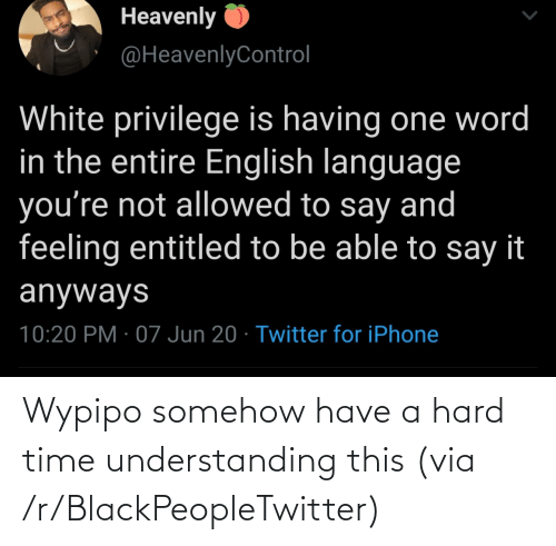 R Blackpeopletwitter: Wypipo somehow have a hard time understanding this (via /r/BlackPeopleTwitter)