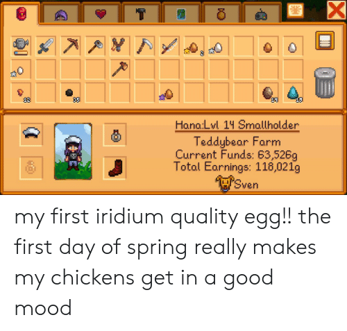 Hona: X  35  12  19  Hona:Lvl 14 Smallholder  Teddybear Farm  Current Funds: 63,526g  Total Earnings: 118,021g  Sven my first iridium quality egg!! the first day of spring really makes my chickens get in a good mood