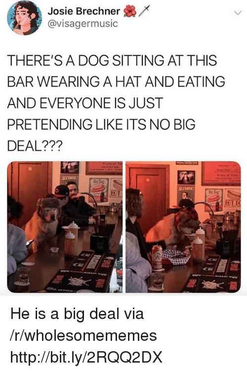 Tots: /x  Josie Brechner  @visagermusic  THERE'S A DOG SITTING AT THIS  BAR WEARING A HAT AND EATING  AND EVERYONE IS JUST  PRETENDING LIKE ITS NO BIG  DEAL???  Fries or Tots  ALCOHOL  Hot  Hot  HOT He is a big deal via /r/wholesomememes http://bit.ly/2RQQ2DX