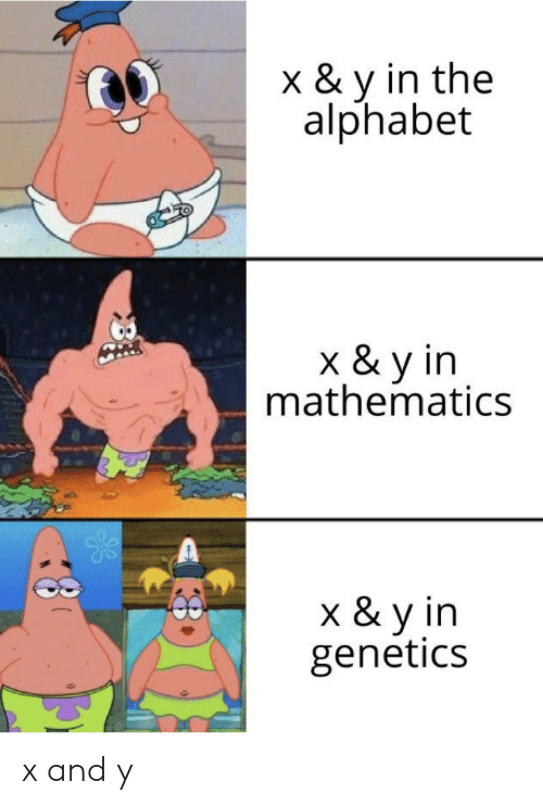 Alphabet: x & y in the  alphabet  k& y in  mathematics  x & y in  genetics x and y