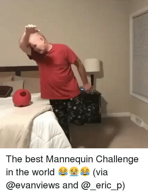 "Best Mannequin Challenge: x  ""y  x The best Mannequin Challenge in the world 😂😭😂 (via @evanviews and @_eric_p)"