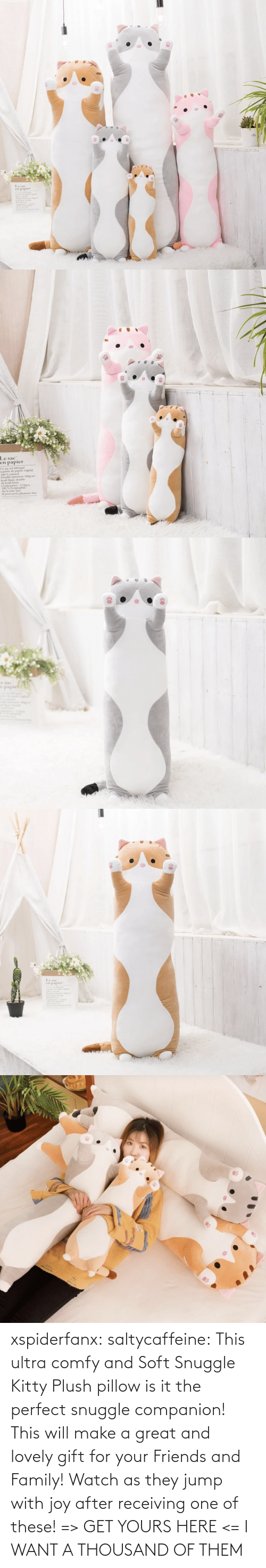 products: xspiderfanx:  saltycaffeine: This ultra comfy and Soft Snuggle Kitty Plush pillow is it the perfect snuggle companion! This will make a great and lovely gift for your Friends and Family! Watch as they jump with joy after receiving one of these! => GET YOURS HERE <=    I WANT A THOUSAND OF THEM