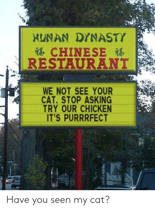 Chinese: XUNAN DYNASTY  CHINESE  RESTAURANT  WE NOT SEE YOUR  CAT.STOP ASKING  TRY OUR CHICKEN  IT'S PURRRFECT Have you seen my cat?