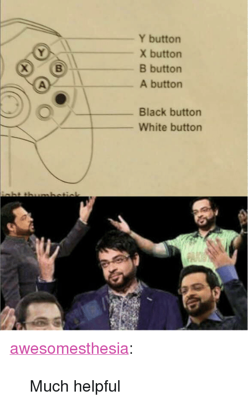 """X Button: Y buttorn  X button  B button  A button  Black button  White button <p><a href=""""http://awesomesthesia.tumblr.com/post/173550092371/much-helpful"""" class=""""tumblr_blog"""">awesomesthesia</a>:</p>  <blockquote><p>Much helpful</p></blockquote>"""