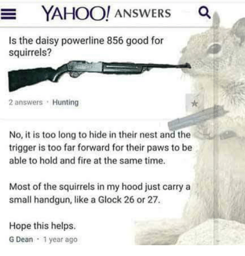 hope this helps: YAHOO! ANSWERS a  Is the daisy powerline 856 good for  squirrels?  2 answers Hunting  No, it is too long to hide in their nest and the  trigger is too far forward for their paws to be  able to hold and fire at the same time.  Most of the squirrels in my hood just carry a  small handgun, like a Glock 26 or 27  Hope this helps.  G Dean 1 year ago