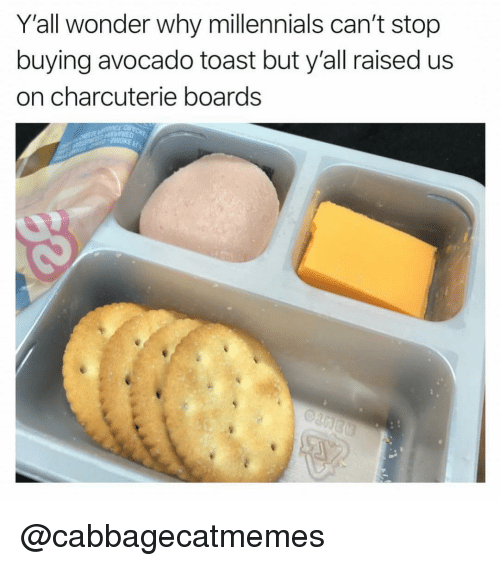 Memes, Millennials, and Avocado: Y'all wonder why millennials can't stop  buying avocado toast but y'all raised us  on charcuterie boards  Cu  th, @cabbagecatmemes