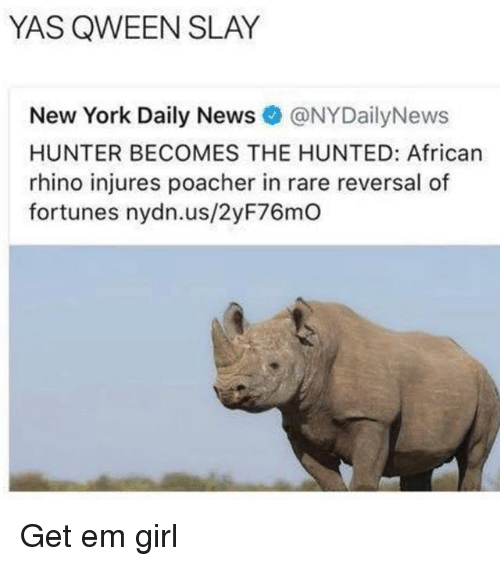 Hunted: YAS QWEEN SLAY  New York Daily News@NYDailyNews  HUNTER BECOMES THE HUNTED: African  rhino injures poacher in rare reversal of  fortunes nydn.us/2yF76mO Get em girl