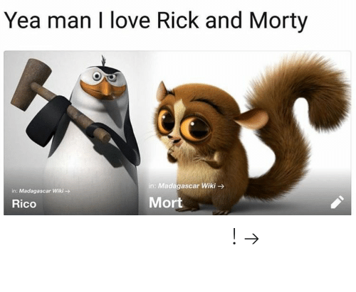 Love, Rick and Morty, and Pinterest: Yea man I love Rick and Morty  in: Madagascar Wiki  in: Madagascar Wiki-  Rico  Mort 𝘍𝘰𝘭𝘭𝘰𝘸 𝘮𝘺 𝘗𝘪𝘯𝘵𝘦𝘳𝘦𝘴𝘵! → 𝘤𝘩𝘦𝘳𝘳𝘺𝘩𝘢𝘪𝘳𝘦𝘥