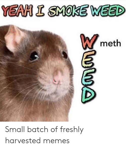 Smoke Weed: YEAH I SMOKE WEED  meth Small batch of freshly harvested memes