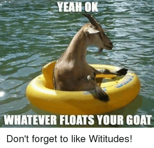 Dank, Yeah, and Goat: YEAH OK  WHATEVER FLOATS YOUR GOAT Don't forget to like Wititudes!