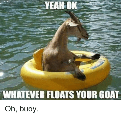 Dank, Yeah, and Goat: YEAH OK  WHATEVER FLOATS YOUR GOAT Oh, buoy.
