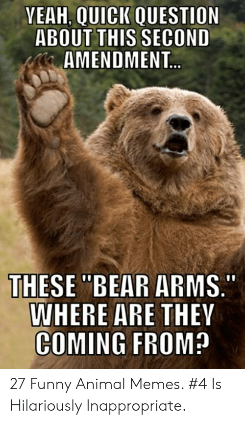 "Hilariously Inappropriate: YEAH, QUICK QUESTION  ABOUT THIS SECOND  AMENDMENT...  THESE ""BEAR ARMS.  WHERE ARE THEY  COMING FROM? 27 Funny Animal Memes. #4 Is Hilariously Inappropriate."