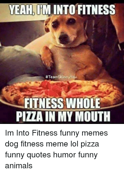 Pizza Funny: YEAHIM INTO FITNESS  #TeamSkinnyYou  FITNESS WHOLE  PIZZA IN MY MOUTH Im Into Fitness funny memes dog fitness meme lol pizza funny quotes humor funny animals