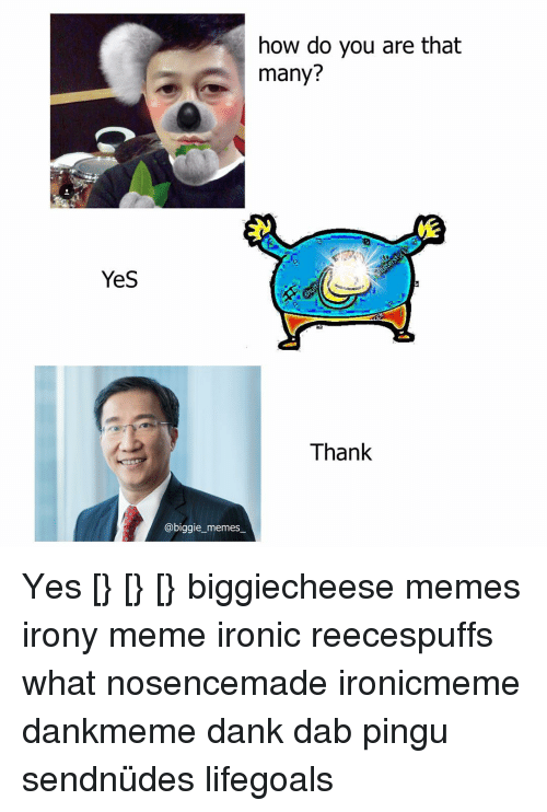 Irony Meme: Yes  how do you are that  many?  Thank  @biggie memes Yes [} [} [} biggiecheese memes irony meme ironic reecespuffs what nosencemade ironicmeme dankmeme dank dab pingu sendnüdes lifegoals