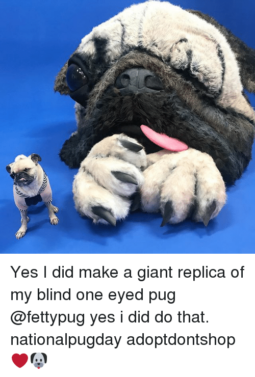 yes i did: Yes I did make a giant replica of my blind one eyed pug @fettypug yes i did do that. nationalpugday adoptdontshop ❤️🐶