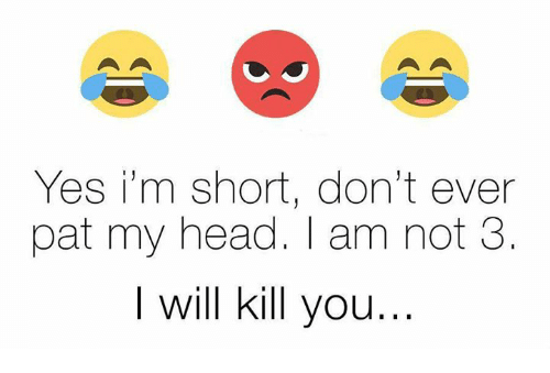 im short: Yes i'm short, don't ever  pat my head. am not 3  I will kill you
